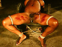 Tied and punished freak